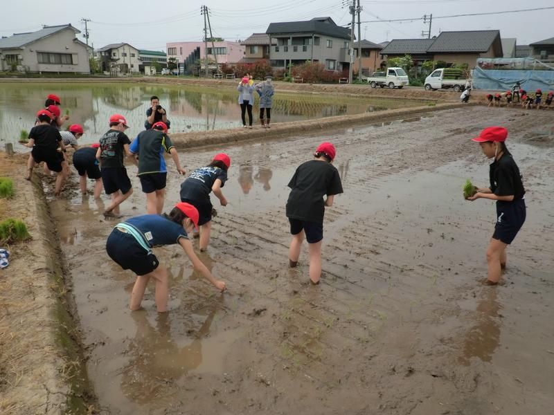 http://horikosi-es.agano.ed.jp/CIMG8094.JPG